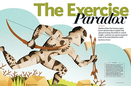 energy paradox diet exercise Scientific American Herman Pontzer TRAIL 25