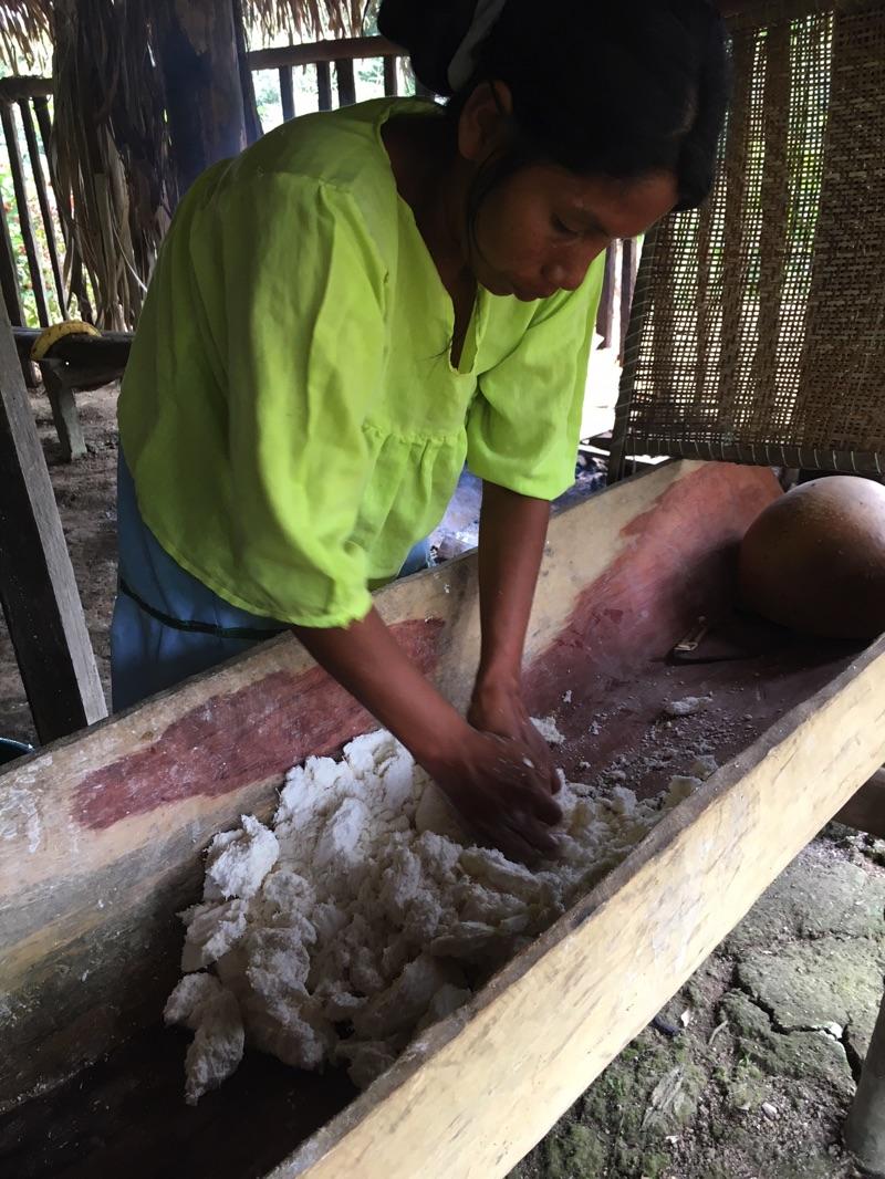 rabies article cassava flour ecuador amazon Deon Braun
