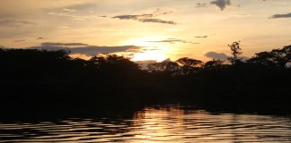 Ecuador Deon Amazon October 2017 sunset Cuyabeno National Park rabies article January 2018
