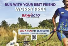 Win a year of Bravecto full page competition TRAIL magazine T28 website 900pixels