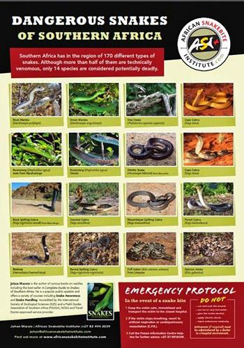 Dangerous snakes app ASI TRAIL 29